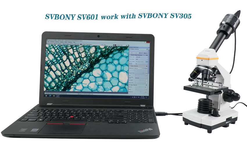 How to use the SVBONY SV601 Microscope with the SVBONY SV305 Astronomy Camera?